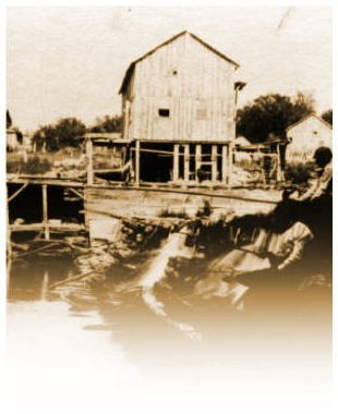 The Old Flouring Mill